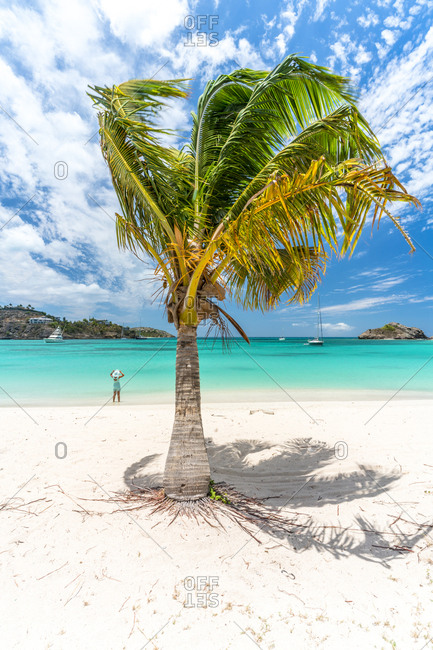 Woman on a palm-fringed beach, Antilles, Caribbean