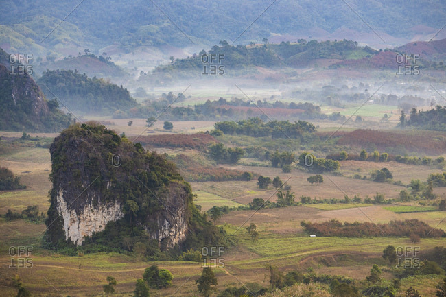 Morning dew in a valley in Northern Thailand