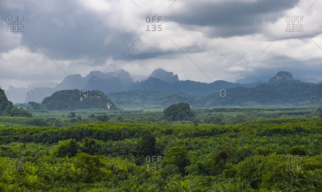 scenic view at Khao Sok national-park in south Thailand