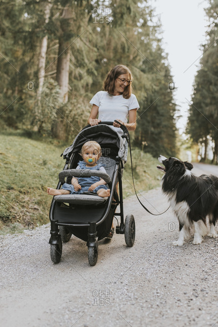 Mother with baby in stroller and dog walking on forest path