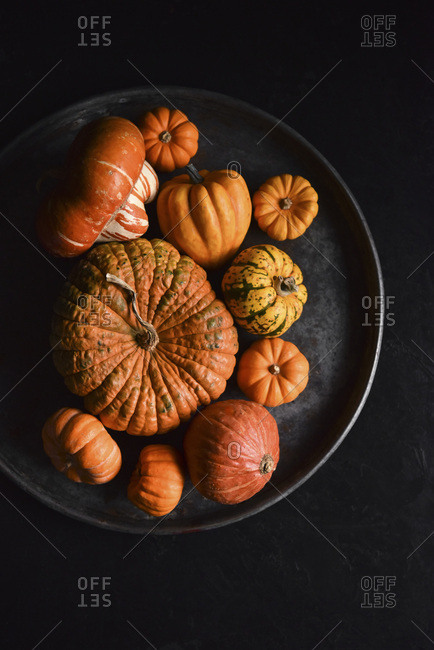 Mini Pumpkins on a dark plate