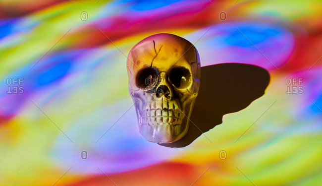 Skull on multi-colored background