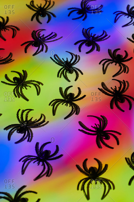 Spiders on multi-colored background