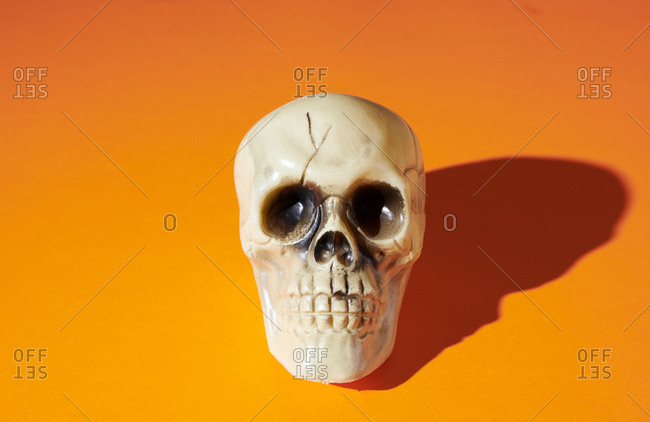 Skull on orange background