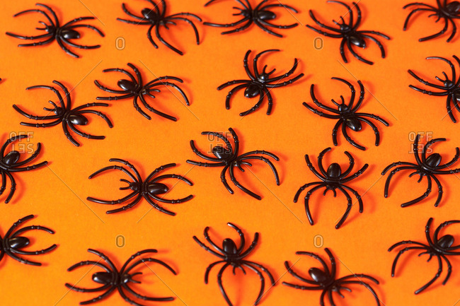 Spiders on orange background