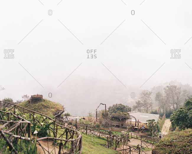 Overlooking garden from hilltop on foggy morning in Guatemala