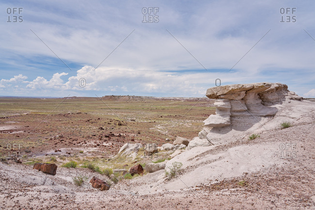Stone formations and petrified wood in the Petrified Forest National Park, Arizona