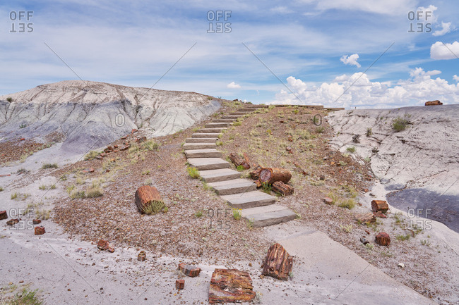 Stone steps and petrified wood in the Petrified Forest National Park, Arizona