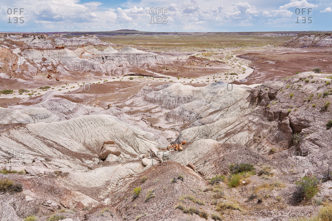 Aerial view over the badlands at Petrified Forest National Park, Arizona