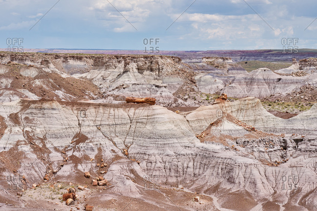 Petrified wood in the badlands at Petrified Forest National Park, Arizona