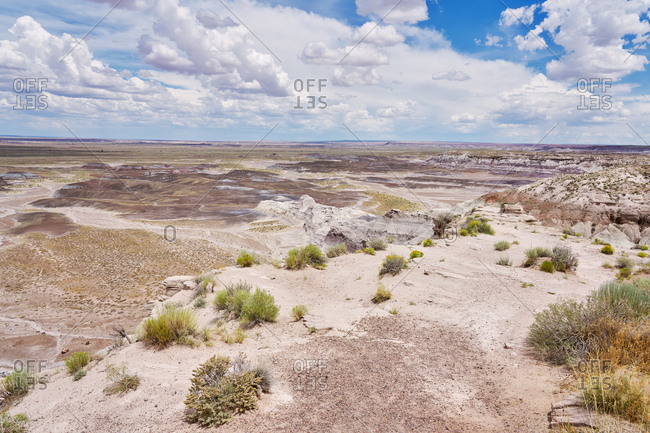 Vast desert at Petrified Forest National Park, Arizona