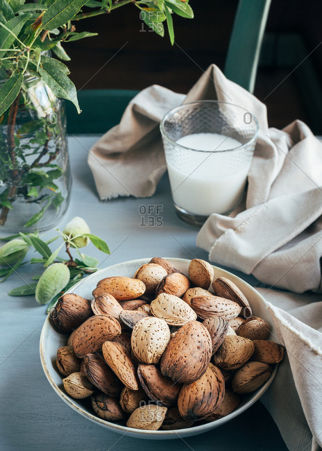Glass of white almond milk next to bowl of almonds in shells and green twigs on kitchen table