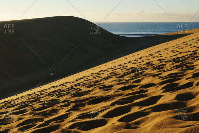 Sandy dunes with traces in sunlight