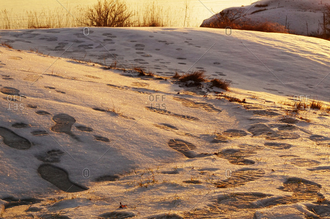 Quiet snowy cliff with footprints at bank of still river on sunset