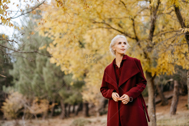 Modern attractive woman in bright coat walking along evergreen forest