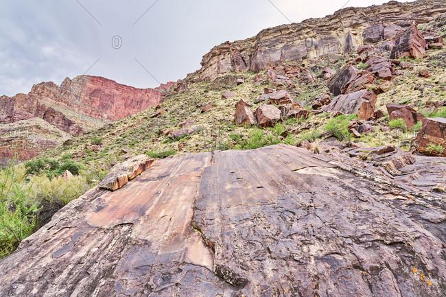 Detail of rock formations, North Kaibab Trail, Grand Canyon National Park, Arizona