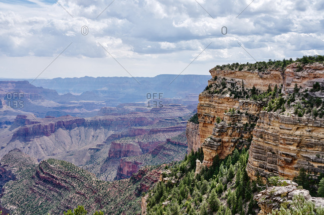 Trees covering hills in Grand Canyon National Park, Arizona