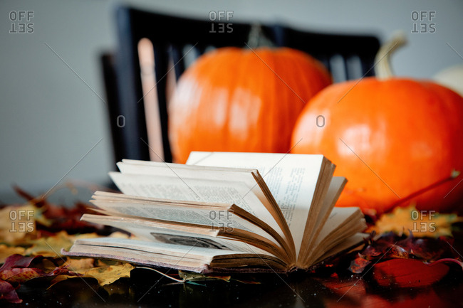 book, pumpkin and maple leaves on a table