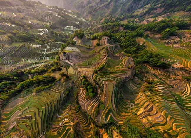 Aerial view of the Yuanyang Hani Rice Terraces, China