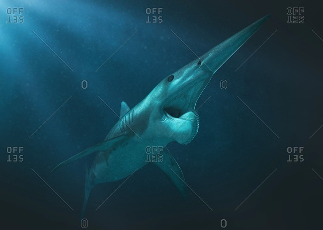 Helicarionid underwater, illustration. - Offset Collection