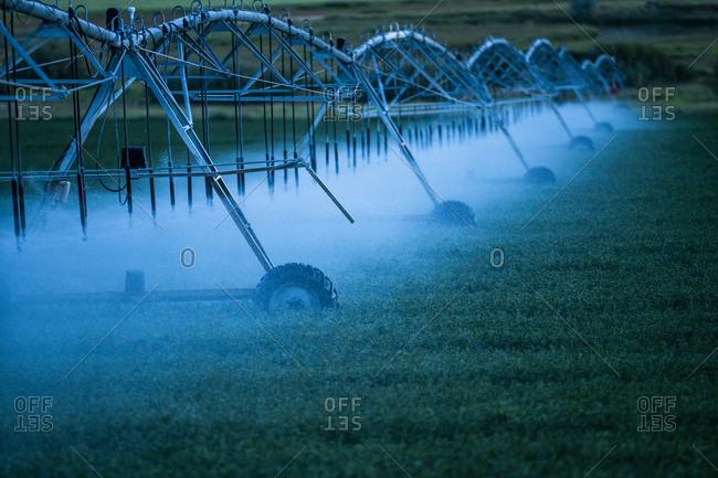 Irrigation system spraying crop field at sunset
