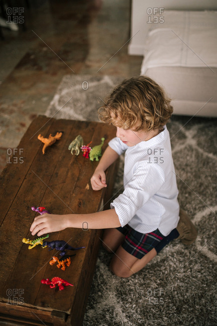 View from above of blond Caucasian child playing with plastic dinosaurs