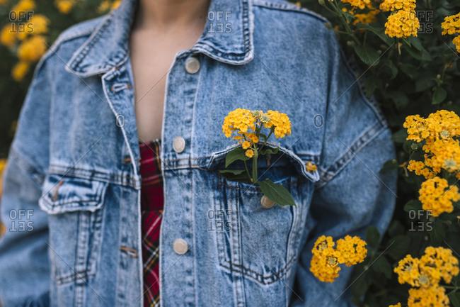 Yellow flowers inside a pocket of a teen girl's denim jacket