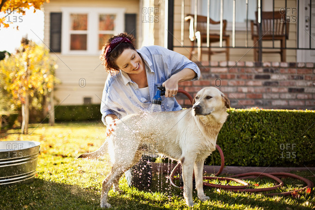 Mid-adult woman washing her dog in the backyard.