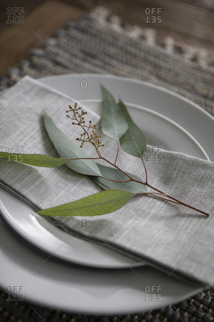 Small branch with leaves on a linen napkin on plate