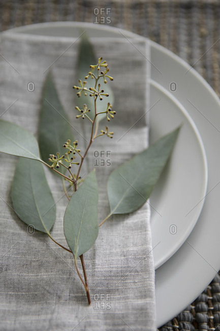 Overhead view of a small branch with leaves on a linen napkin on plate