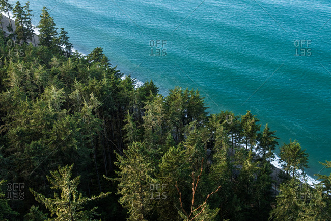 Bird's eye view over trees on the coast of turquoise blue waters