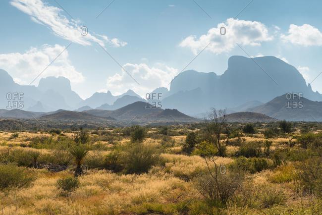 Desert landscape, Big Bend National Park, Texas, United States