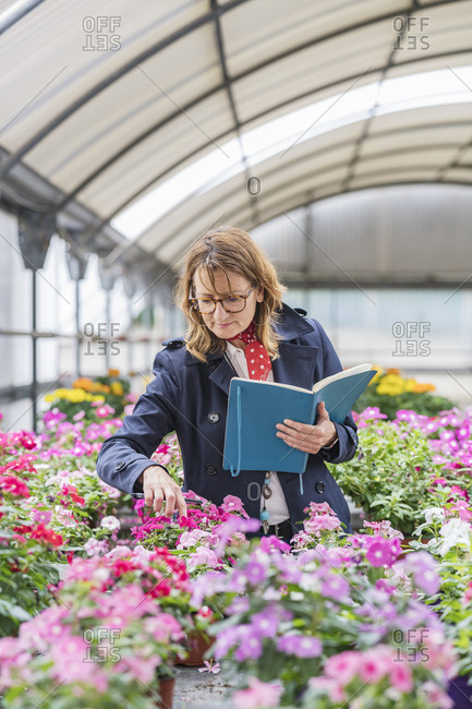 Female manager working in a plant nursery