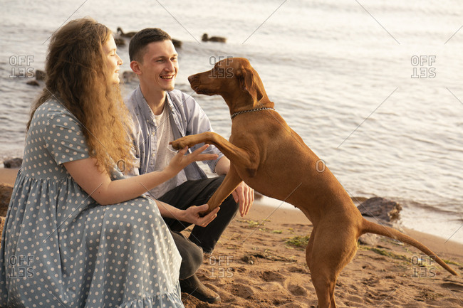 Couple with dog at the beach- dog giving paw