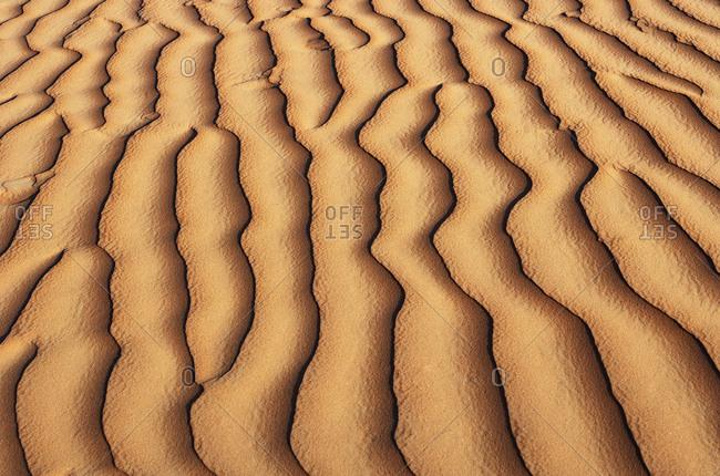 Oman- Rippled sand on a dune- full frame
