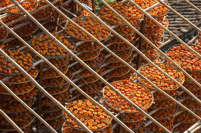 Drying persimmons outside