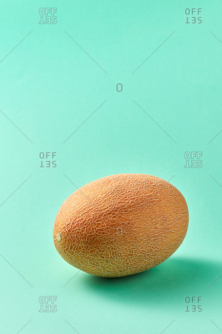 Freshly picked ripe natural organic melon on a biscay green background with soft shadows, copy space. Vegetarian concept.