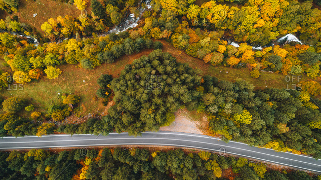 Bird's eye view over colorful trees and highway in autumn