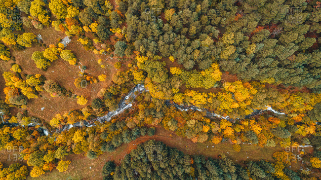 View over landscape with winding river and a beautiful autumn forest