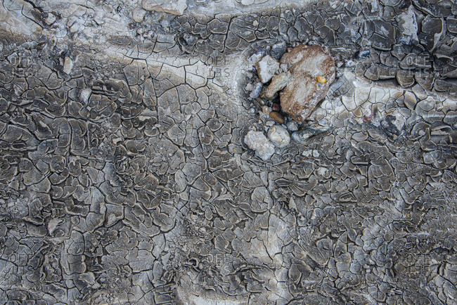 Detail of desiccated ground in Bisti/De-Na-Zin Wilderness in New Mexico