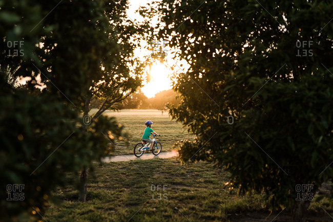 Preschooler riding a bicycle on sidewalk at sunset