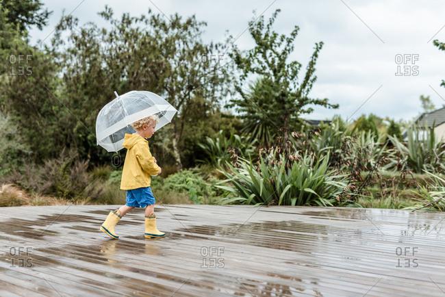 Preschooler holding an umbrella splashing in puddles