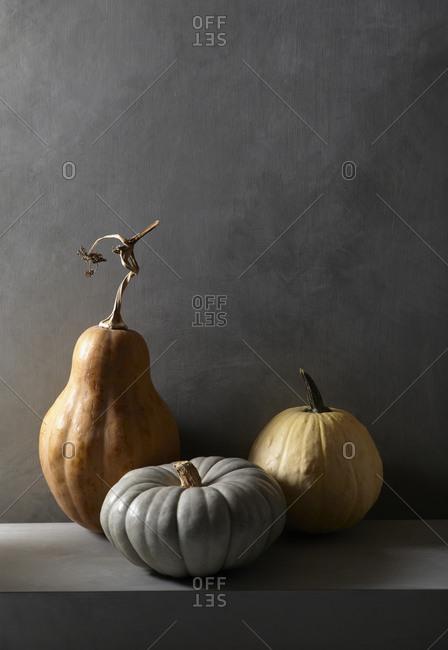Three Pumpkin Still Life