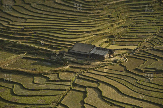 House into the rice fields of northern Vietnam