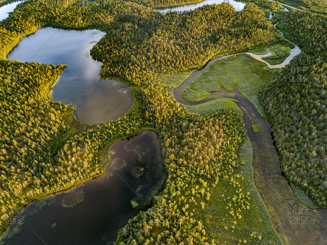Drone view, aerial photo of Vuontisjarvi, small lakes and meanders, river loops in boreal arctic forest with conifers, Pines (Pinus) Karesuando, Norrbottens lan, Sweden, Europe