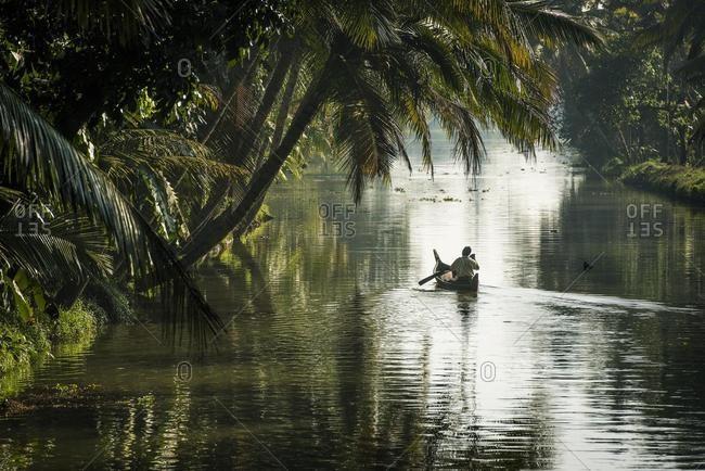 Man in a small wooden boat, palm trees, backwaters, Kerala, Malabar Coast, South India, India, Asia