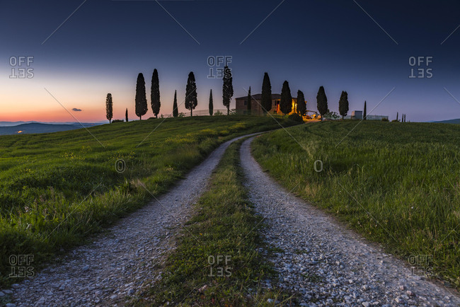 Tuscan landscape with grain field, dusk, San Quirico d'Orcia, Val d'Orcia, Tuscany, Italy, Europe