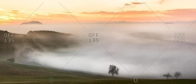 Foggy view of Bisberg, Hegau, Baden-Wurttemberg, Germany, Europe
