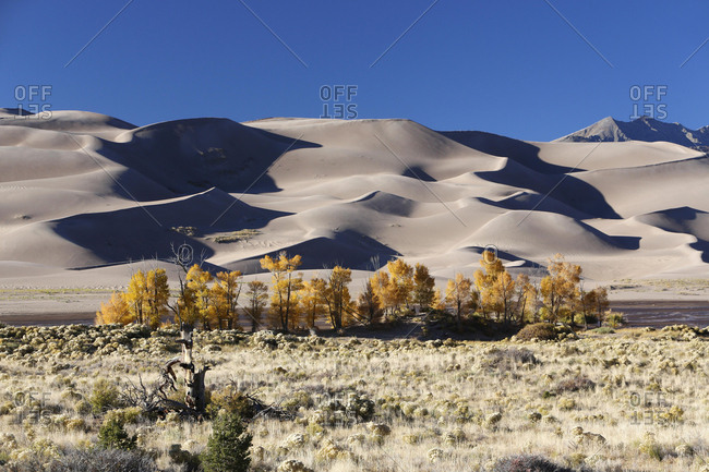 Medano Creek, Great Sand Dunes National Park and Preserve, Colorado, United States, North America
