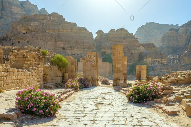 The colonnaded street, petra archeological park, jordan